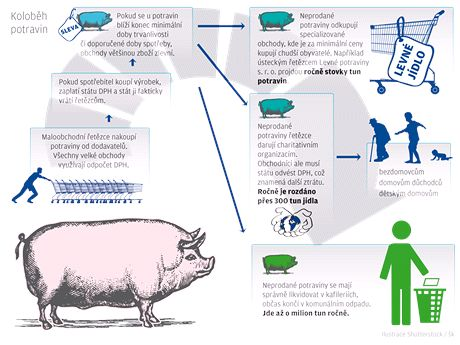 Koloběh potravin - infografika