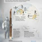 Dějiny lyží – infografika