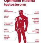 Jaký vliv má testosteron na muže? – infografika