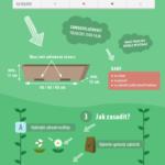 Jak vyzrát na balkonovky? – Infografika
