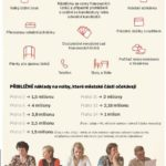 Co radnice zařizují před volbami – infografika