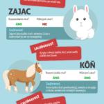 Domácí mazlíčci a cukr – infografika