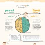 Co během zkouškového (ne)dopřát mozku – infografika