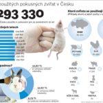 Pokusy na zvířatech si loni vzaly více než 230 tisíc němých tváří